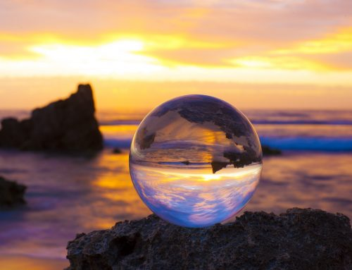 2019 Predictions: Crystal Ball Edition